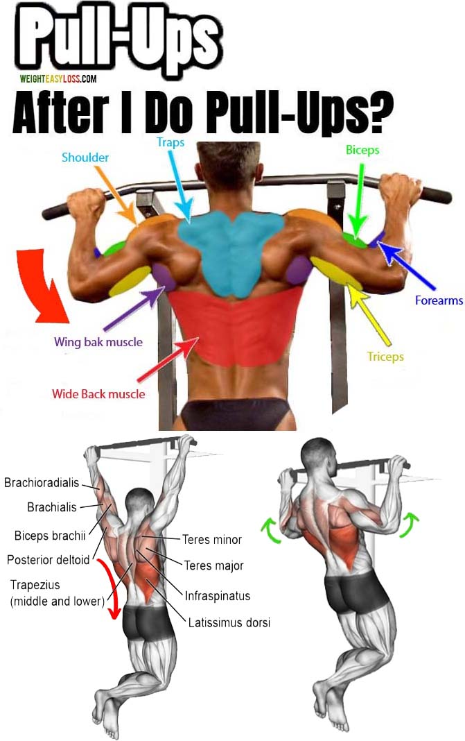 Pull-Ups on the Horizontal Bar