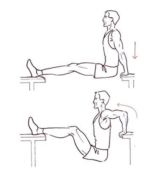 Best Bodyweight Workout -Bench Dips