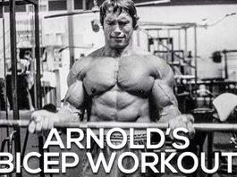 Arnold Schwarzenegger Biceps Exercises