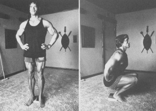Arnold Schwarzenegger Perform Squats