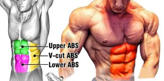 ABS Workout Tutorial