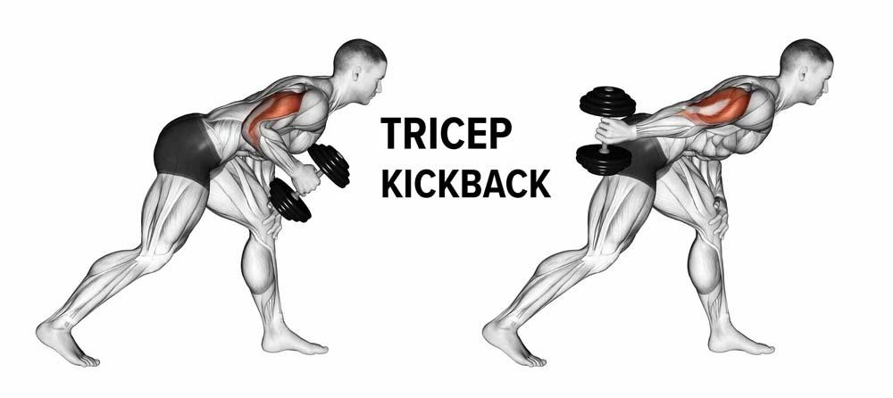 How to Triceps Kickback