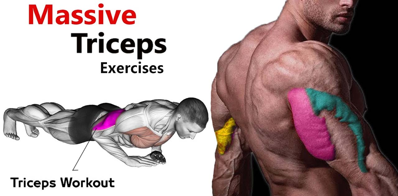 How to Massive Triceps Exercises