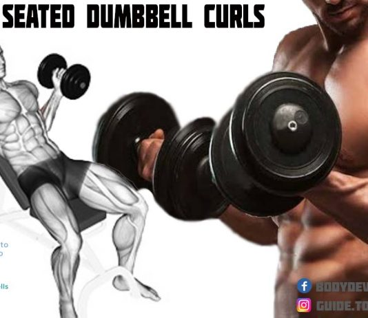 How to Do Seated Dumbbell Biceps Curls.jpg